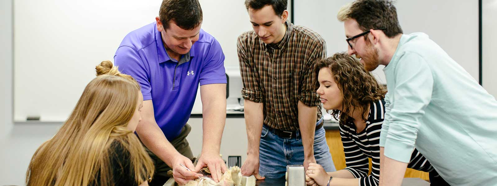 professor works on biology dissection with four students observing
