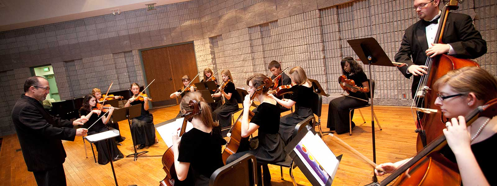 strings ensemble performance